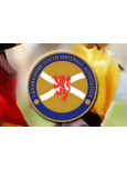 Central Lanarkshire Youth Football Association